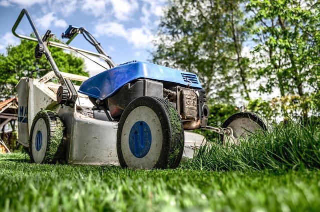 Bild Rasen mähen Rasenmäher