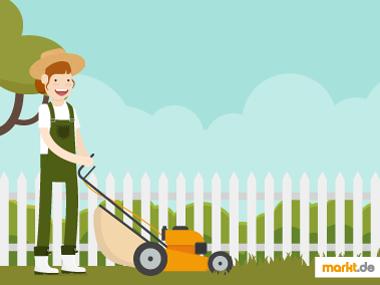 Grafik Rasenpflege / Rasenmähen