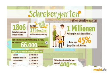 Infografik Schrebergarten / Kleingarten