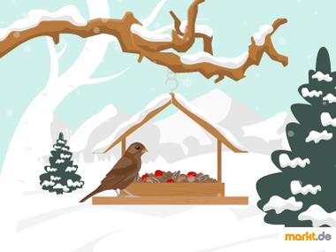 Grafik Vogelfütterung im Winter