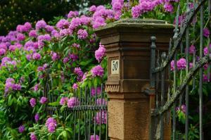 Vorgartengestaltung Ideen Fur Den Vorgarten Markt De