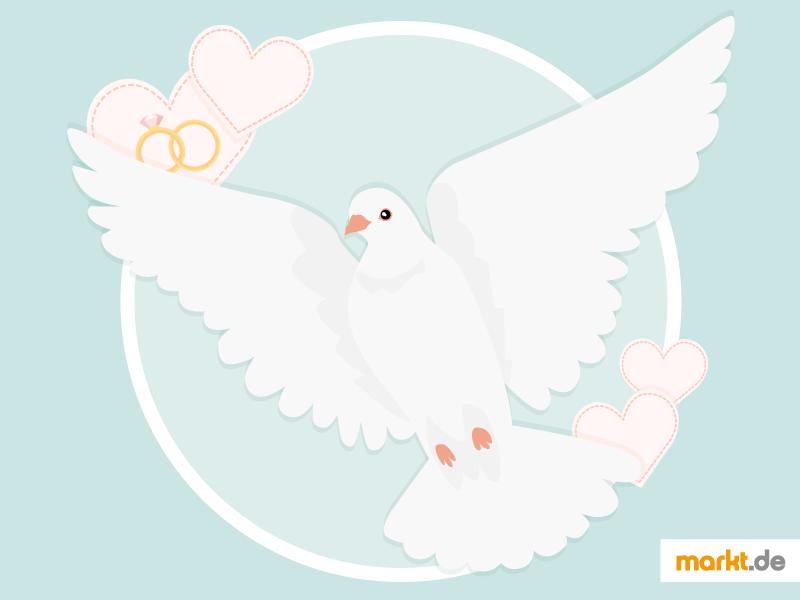 Mit Hochzeitstauben Heiraten Trauung Mit Tauben Markt De