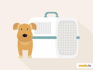 Grafik Autofahren mit Hund / Transportbox