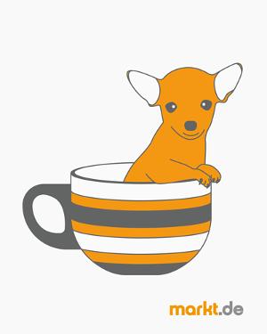 Bild chihuahua in einer Tasse