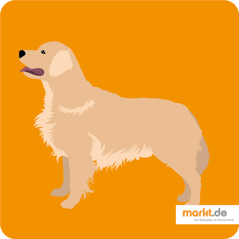 Grafik Golden Retriever Hund