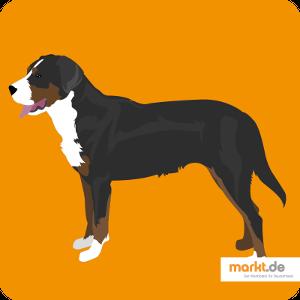 Grafik Schweizer Sennenhund