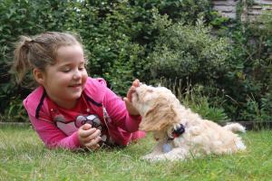 Kleines Mädchen und Hund spielen zusammen