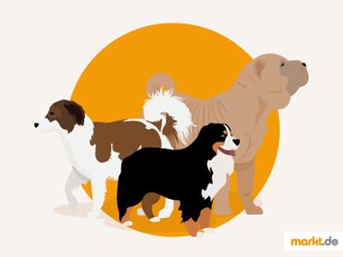 Grafik Hunde der Rassengruppe 2