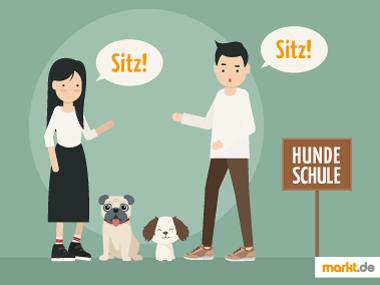 Grafik Hundeschule / Welpenschule