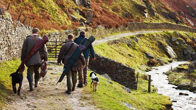 Männer bei der Jagd mit Hunden