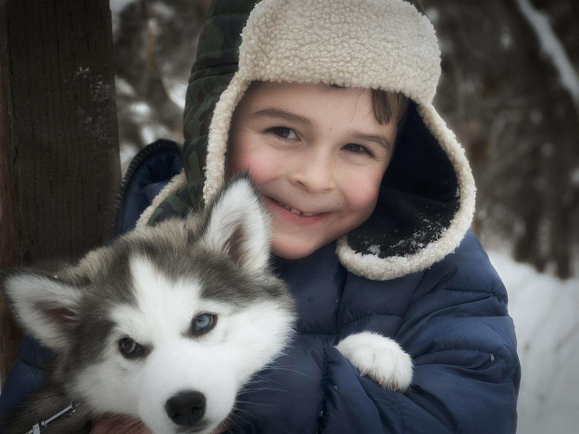 Bild Kind mit Huskywelpe