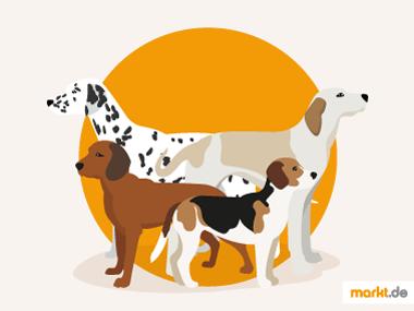 Hunde Grafik