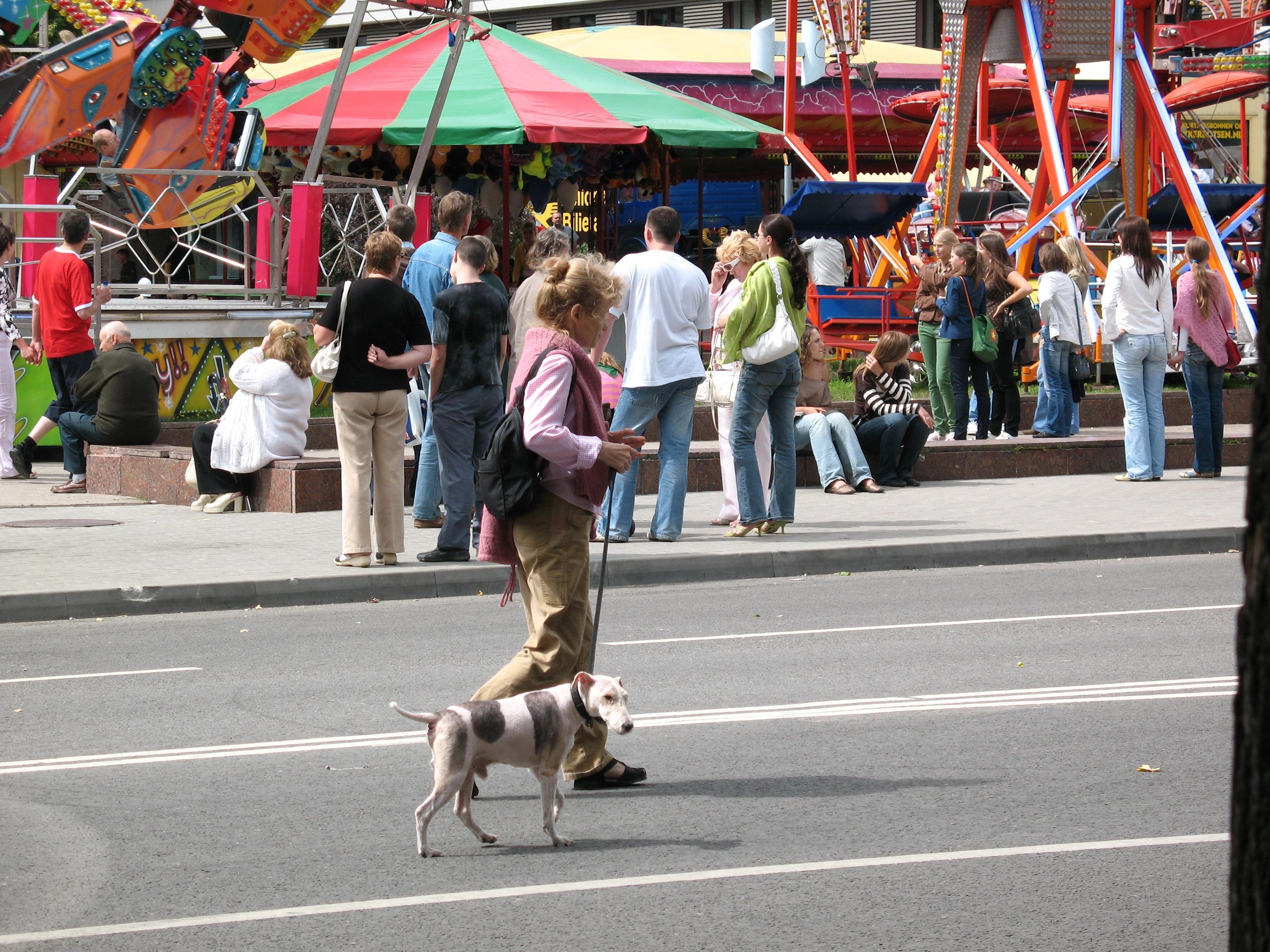 Gassi gehen Hund