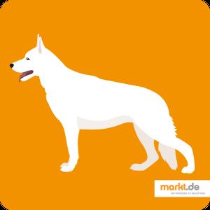Grafik Weißer Schweizer Schäferhund
