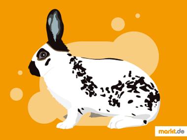 Grafik Kaninchen Englische Schecken