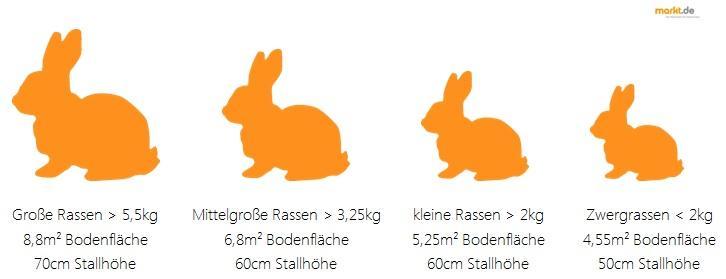 Bild Stallgrossen Fur Kaninchen