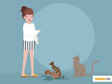 Grafik Erziehung von Katzen