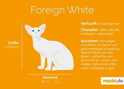 Rasseportrait Foreign White