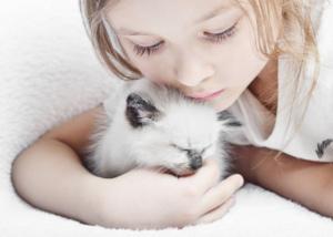 Kind und Katze kuscheln