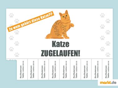 Katze zugelaufen Flyer