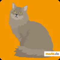 Grafik Sibirische Katze