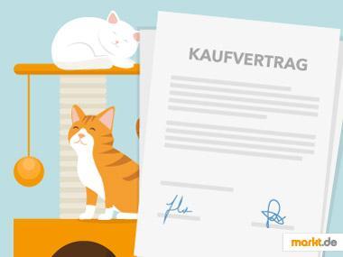 Grafik Kaufvertrag für Katzen