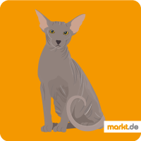 Grafik Peterbald