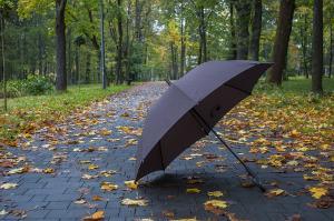 Bild schwarzer Regenschirm