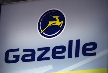 Bild Gazelle Logo