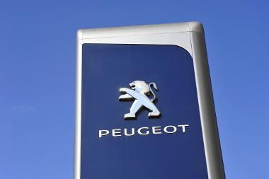 Bild Peugeot