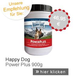 Happy Dog Power