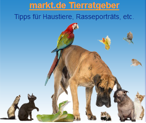 Haustiere im Tierratgeber