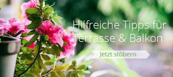 Hilfreiche Tipps für Terrasse & Balkon