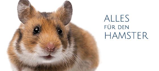 Alles für den Hamster