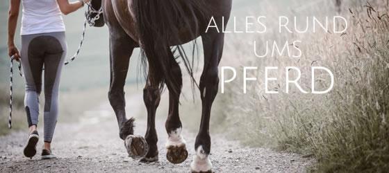 Alles rund ums Pferd