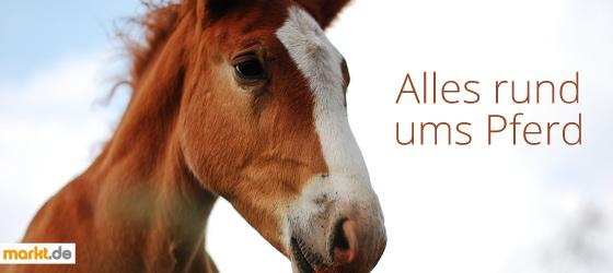 Alles für Pferde