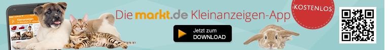markt.de Kleinanzeigen-App