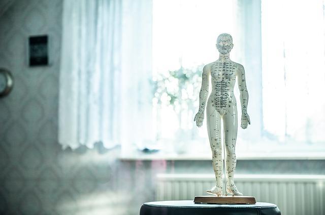Bild Akupunktur