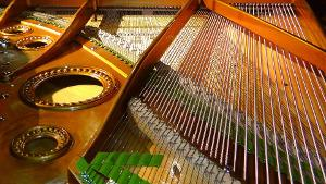 Bild Klaviersaiten