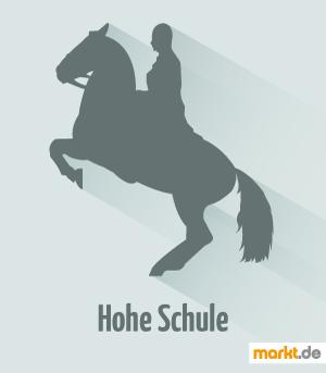 Bild Pferd mit Reiter in der Hohen Schule