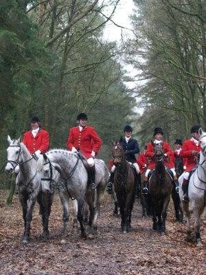 Bild Jagdpferde mit Reiten in Uniform