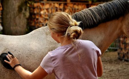Frau bürstet Pferd