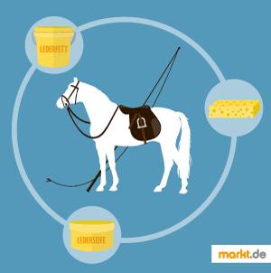 Bild Pferd mit Sattel und Reinigungsartikel