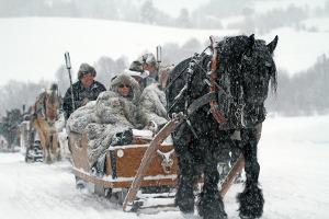 Bild Kutsche in einer Winterlandschaft