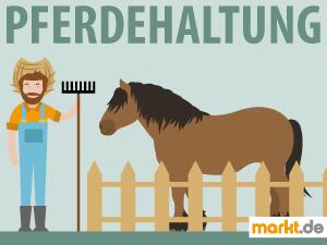 Bild Farmer neben Pferd hinter einem Zauen