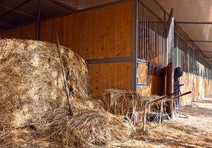 Bild Pferdestall und Heu