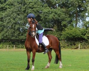 Bild junges Mädchen in Ausrüstung schwingt auf ein Pferd