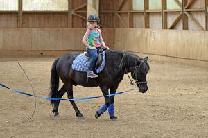Bild junges Mädchen auf einem Pferd mit Longe