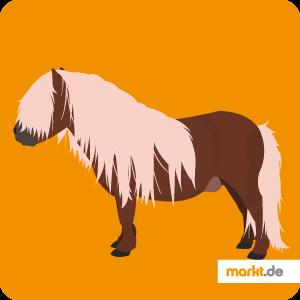 Bild Pferderasse Shire Horse