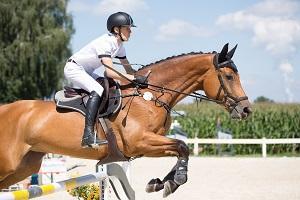 Bild Reiter mit Springgerte beim Sprung
